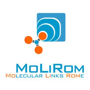 MoLiRom, X-Probe, Team, Rome, Italy